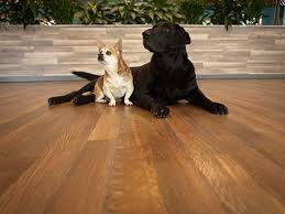 hardwoof wood flooring line for pet owners leads industry in dent