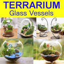 qoo10 terrarium vessel terrarium container lighted glass