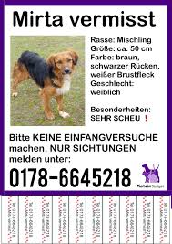 Tierheim Baden Baden Entlaufen Hund Entlaufen In Baden Württemberghund Entlaufen In