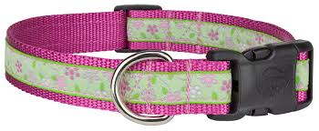 woven ribbon buy deluxe fresh floral woven ribbon on dog collar