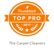 Upholstery Cleaning Sarasota Carpet Cleaning Lakewood Ranch Carpet Cleaner Sarasota Tile Cleaning