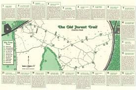 The Forest Map Walk And Learn On The Old Forest Loop Overton Park