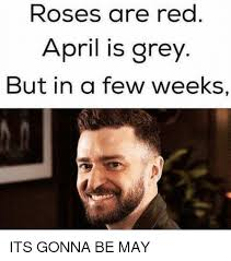 April Meme - roses are red april is grey but in a few weeks its gonna be may