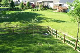 Define Backyard Yard Land Wikipedia