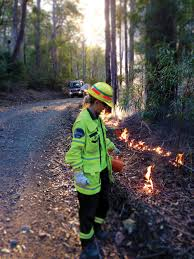 seasonal firefighters forestry corporation of nsw