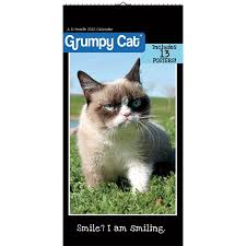 Grumpy Cat Mini Wall Calendar - grumpy cat 2018 mini poster calendar walmart com