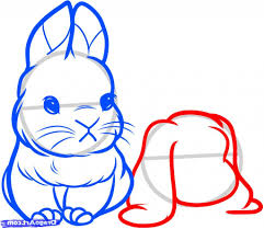 a drawing of a rabbit best photos of rabbit line out bunny rabbit