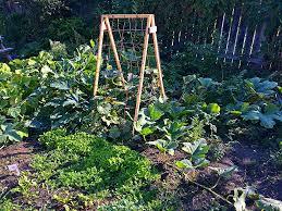 seven fall garden chores to do now for an easier spring shifting