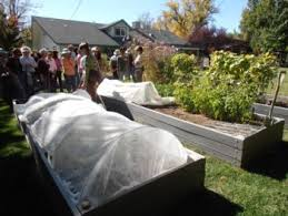 raised bed gardening inyo mono master gardener program