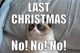 Grumpy Cat No Meme - 18 extremely funny grumpy cat no memes sayingimages com
