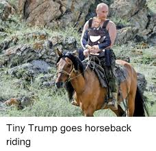 Horse Riding Meme - apa tiny trump goes horseback riding donald trump meme on me me