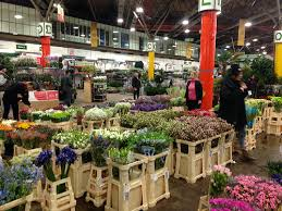 flower wholesale buying flowers at new covent garden flower market at nine elms