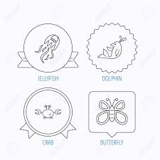 jellyfish crab and dolphin icons butterfly linear sign award