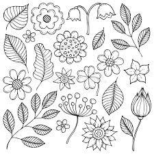 fiori disegni disegni tema 1 delle foglie e dei fiori illustrazione