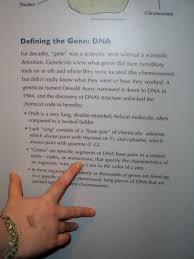 is dna a code