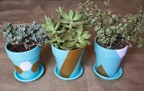 juneberry lane tutorial tuesday diy succulent painted pots
