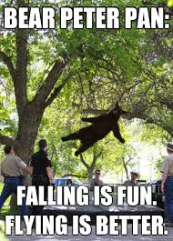 Peter Pan Meme - bear peter pan memes quickmeme