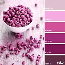 best 25 pink color palettes ideas on pinterest peach color