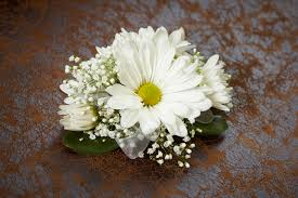 white daisy wrist corsage also available in yellow and lavender in