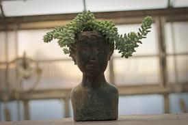 bad hair day medusa style geek gardens