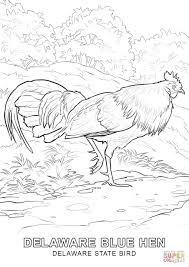 delaware state bird coloring page free printable coloring pages
