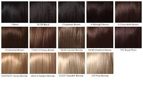 hair color chart dark brown hair color chart world of printable and chart