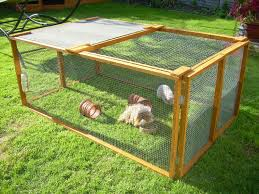 Metal Rabbit Hutch Awesome Ideas For Guinea Pig Hutch And Cages Rabbit Cages