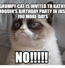 Birthday Grumpy Cat Meme - grumpy cat is invited to kathy loquints birthday party in uus 190