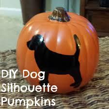 target dog halloween costumes last minute diy dog halloween costumes from baby onesies