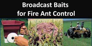 broadcast baits for fire ant control extension