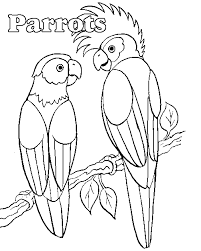 perfect parrot coloring pages perfect coloring 1707 unknown