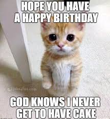 No Cake Meme - joke4fun memes no bday cake for you
