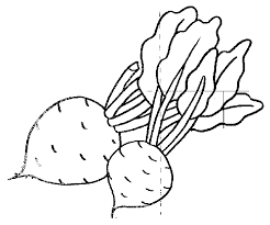 coloriages nature à imprimer dessin à colorier allofamille