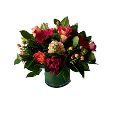 protea u0026 gerber daisy arrangement newberry brothers florist
