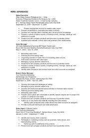 Resume Other Activities Darz Resume