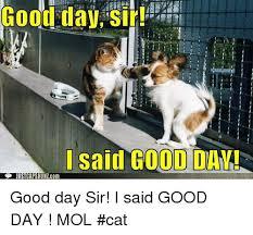 Good Day Sir Meme - pics me me isaid good day justcapshunlcom good day
