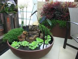 Container Water Garden Ideas Water Container Garden Patio Container Water Garden Pond New