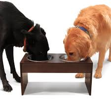 Wall Mount Pet Feeder Dog Waterers And Dog Feeders Best 25 Pet Bowls Ideas On Pinterest