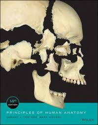 Principles Of Anatomy And Physiology Ebook Wiley Principles Of Human Anatomy 14th Edition Gerard J
