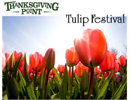 2 tulip festival tickets utah deal