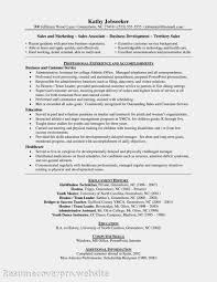 luxury retail sales resume sample resume sales associate corpedo com