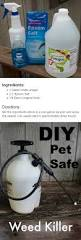 diy pet safe weed killer sprays rain and gardens