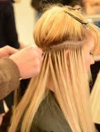racoon hair extensions about racoon hair extensions colchester hair extensions