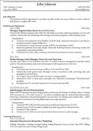 Top Sales Resumes Examples by Chic Inspiration Examples Of Professional Resumes 2 Best Resume