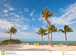 Summer Lounge Chairs Summer Beach Scene With Palm Trees And Lounge Chairs Stock