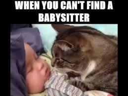 Babysitting Meme - when you can t find a babysitter youtube