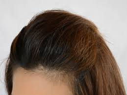step cut hairstyle pictures step cut hairstyle for straight hair back view step haircut for