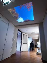 Interior Design What Do They Do by What Are Sky Panels And What Do They Do Lumick Com