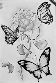 picture of roses with butterflies google search misc things
