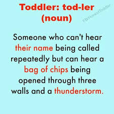 Being A Mom Meme - toddlers a species who can t hear their name being called nag of